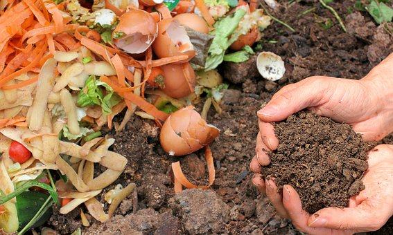 Pourquoi utiliser un compost dans son jardin ?